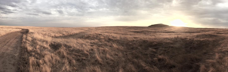 FMR grasslands