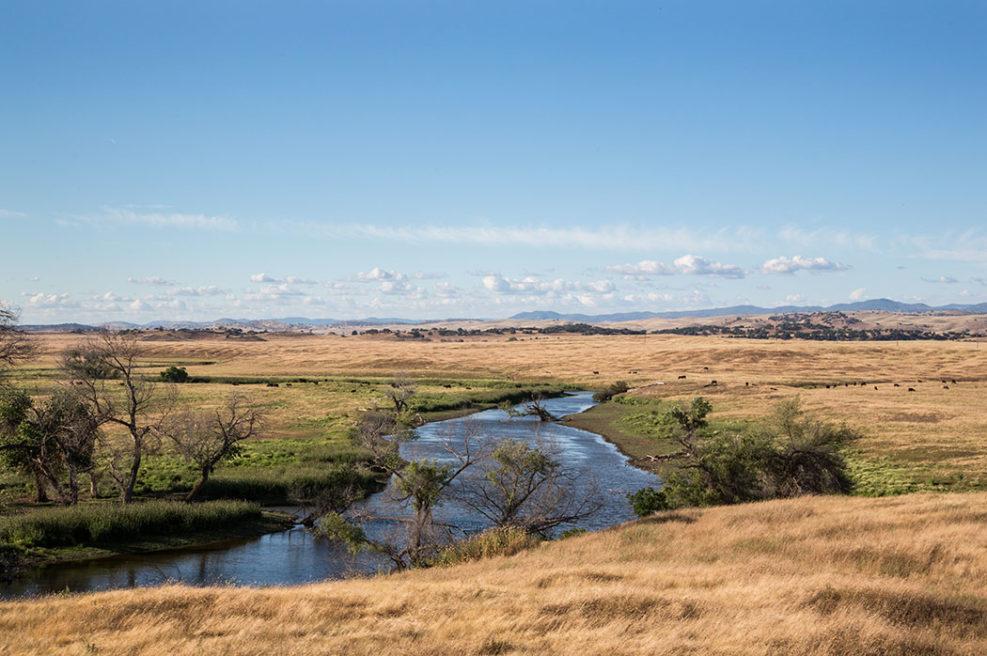 FMR creek