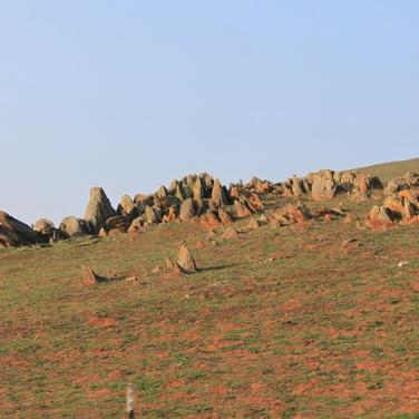 FMR landscape